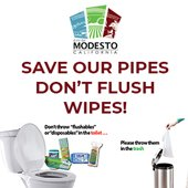 Save our Pipes Don't flush wipes
