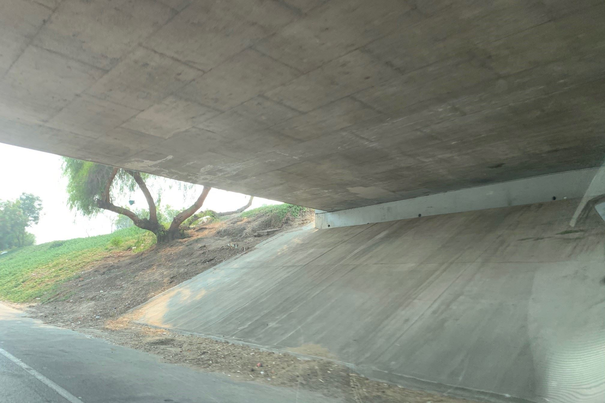 State Route 99 Underpass after cleanup