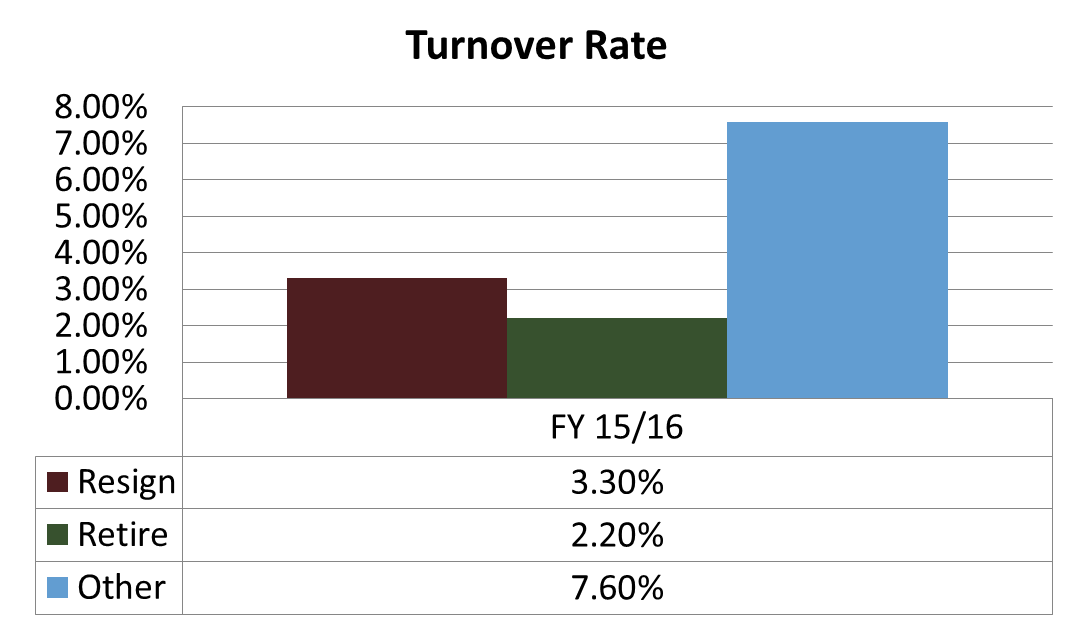 HR Turnover Rate. Click or read below for text overview.