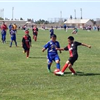 Young Soccer Players on a Soccer Field
