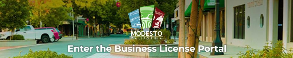Business License Portal