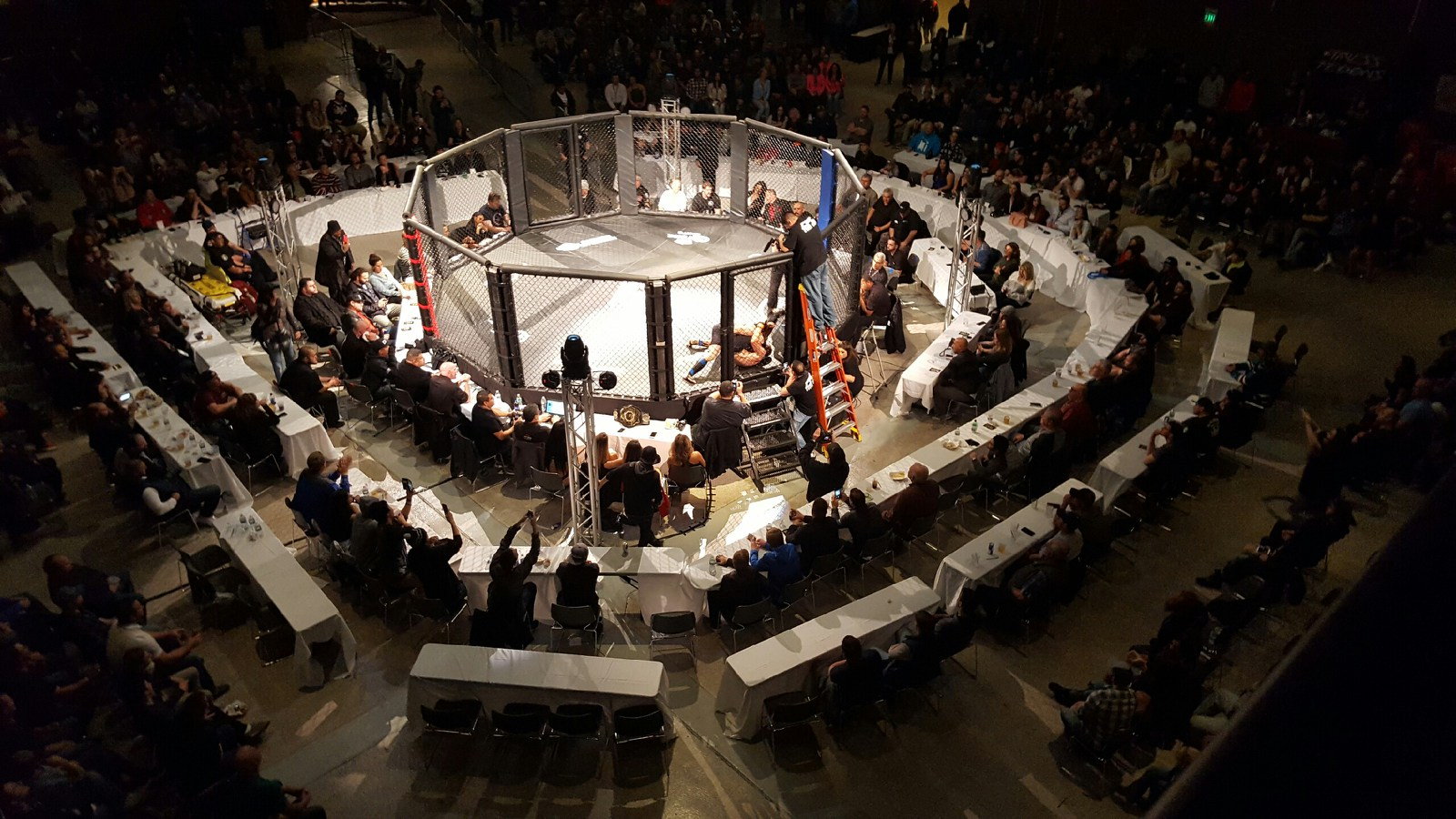 Cagefighting