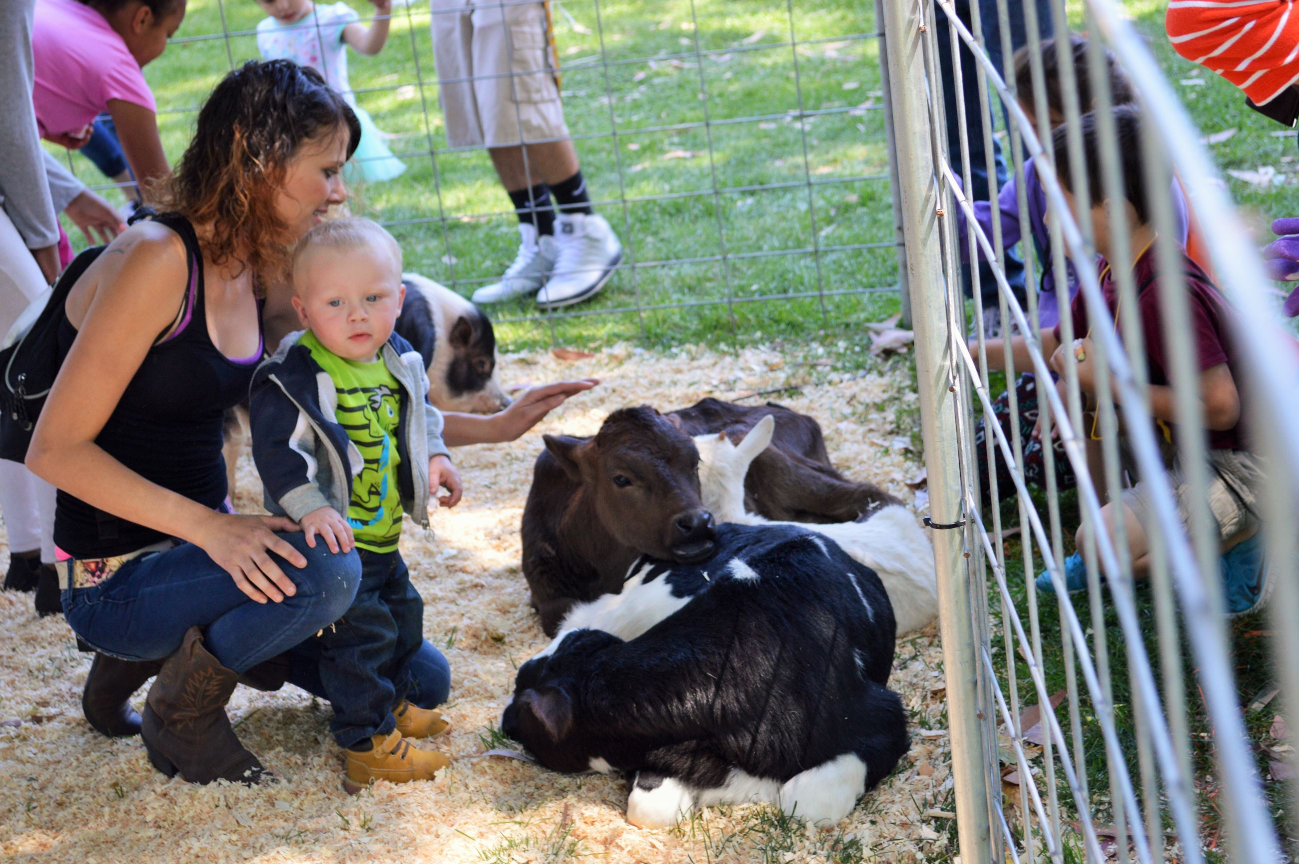 Farm Friends petting Zoo (3)